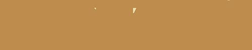 webelieve bronze texture 500